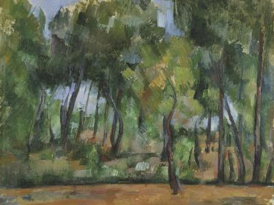 Provencal Landscape, Cézanne, Paul (1839-1905) © NATIONAL MUSEUM OF WALES