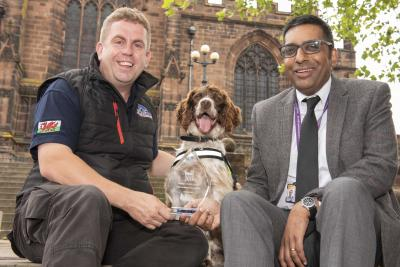 Scamp, a hard working springer spaniel has been named the Institute's Hero in the Chartered Trading Standards Institute (CTSI) Hero Awards 2019, nominated by City of Wolverhampton Council