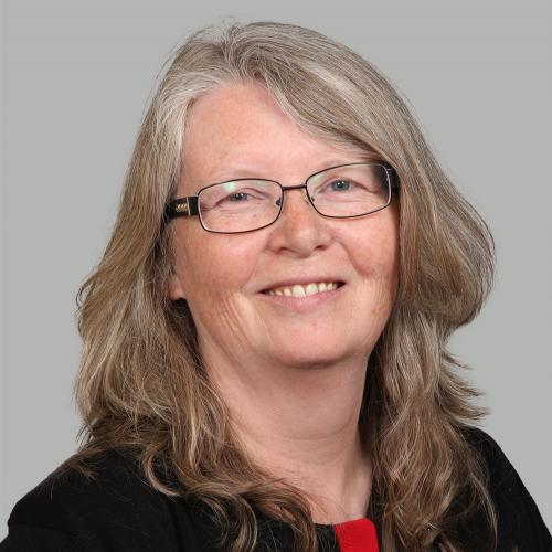 Councillor Darke, who has represented the city's Park ward for 11 years, will make recognising the contribution of women and prevention of suicide and self harm the themes of her year in office